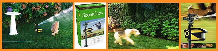 The ScareCrow will chase animals away from your flower beds and garden!